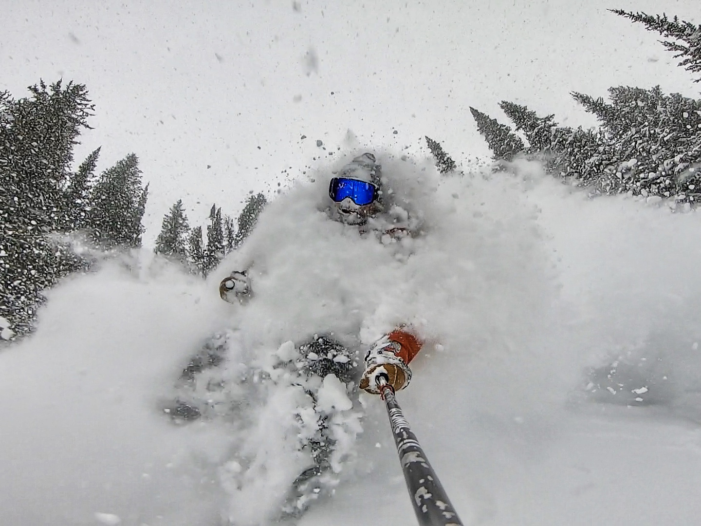 Tim Durtchi in Jackson Hole
